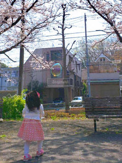 シャボン玉と戯れる女の子の写真・画像素材[1991642]