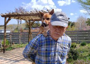犬を背負う人の写真・画像素材[2023520]