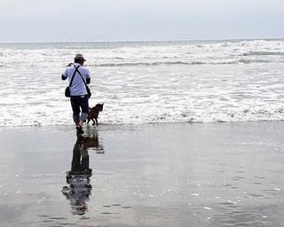 男性,犬,海,空,動物,シニア,屋外,ビーチ,後ろ姿,波打ち際,波,散歩,水面,海岸,人物,人,朝,60代,リフレクション,5月,愛犬,千葉県,一宮海岸