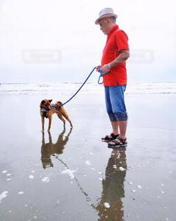 男と犬が水の中を歩いているの写真・画像素材[2140812]