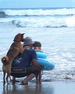 水域の近くの浜辺の人と犬の写真・画像素材[2357422]