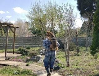 おんぶで散歩の写真・画像素材[2700211]
