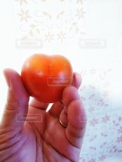 食べ物,屋内,手,手持ち,トマト,野菜,ハート,人物,人,小さい,朝,ポートレート,ライフスタイル,赤い,自宅,手元,形,持つ