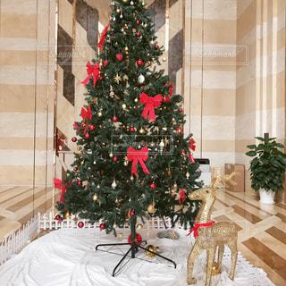 クリスマス ツリーの写真・画像素材[962918]