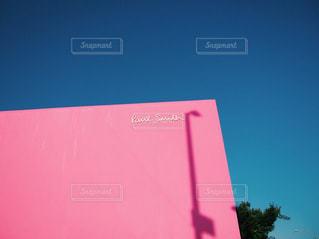 ポールスミス ピンクの壁 - No.875665