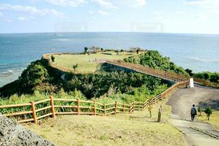 海,公園,緑,沖縄