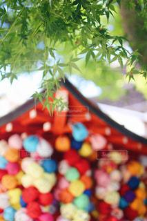 京都,カラフル,旅行