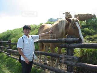 馬とイケメン - No.889252