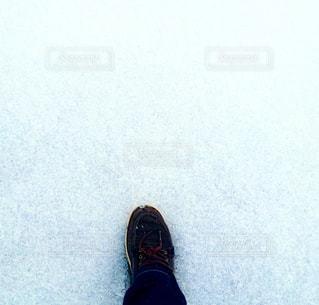 雪絨毯を踏んでの写真・画像素材[914020]