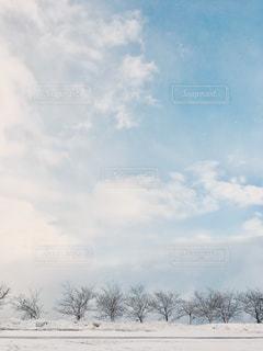 白い世界の写真・画像素材[914177]