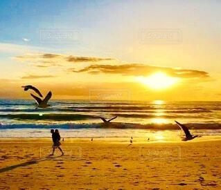夕日のシルエットの写真・画像素材[4854770]