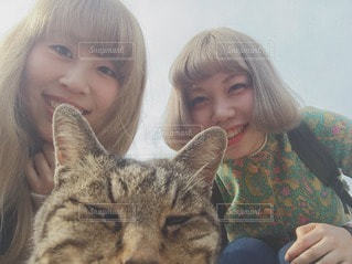 猫 - No.98802