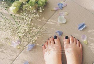 花と足元の写真・画像素材[1821590]