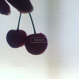 フルーツ,さくらんぼ