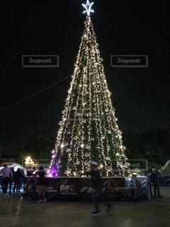 屋外,イルミネーション,クリスマス,ツリー,クリスマスツリー,メキシコ,電飾