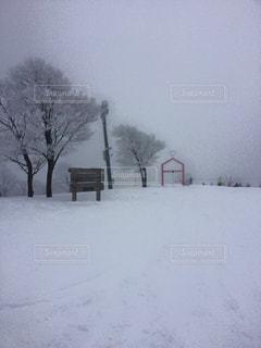 雪に覆われた斜面 - No.929253