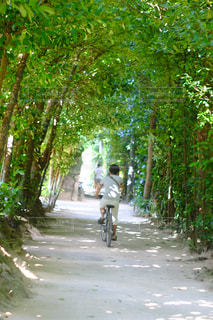 通りの下で自転車に乗る男の写真・画像素材[896781]