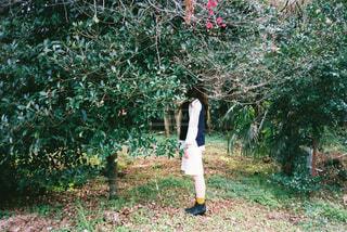 木の隣に立っている人の写真・画像素材[1232976]