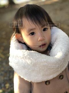 動物のぬいぐるみを保持している小さな女の子 - No.880268