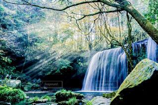 森の中の大きな滝の写真・画像素材[882296]