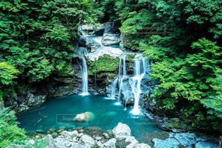 滝の写真・画像素材[967498]