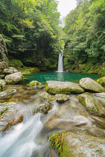にこ淵の滝の写真・画像素材[1450943]