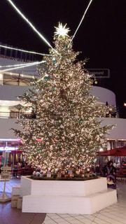 冬,ライトアップ,クリスマス,横浜,クリスマスツリー
