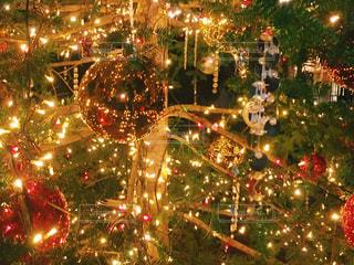 クリスマスツリーの写真・画像素材[914999]