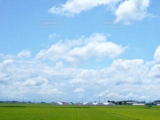 山形の夏休みの写真・画像素材[1096218]