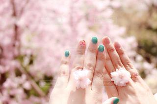 春のセルフネイルの写真・画像素材[1155676]