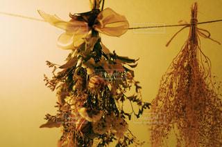 木の枝に花の花瓶の写真・画像素材[934569]