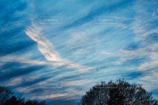 青い空の写真・画像素材[1114835]