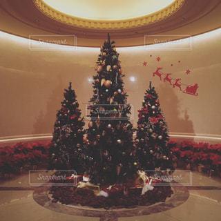 結婚式,クリスマス,クリスマスツリー,想い出