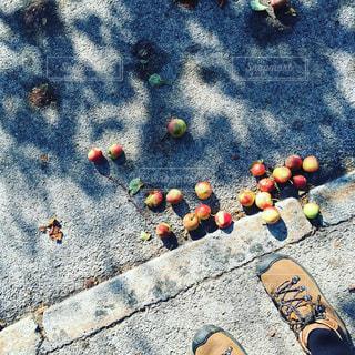 フルーツ,りんご,リンゴ