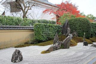 秋,紅葉,京都,観光,日本庭園,大徳寺,枯山水,石庭,禅寺,瑞峯院
