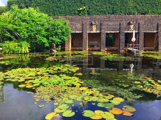 水の体の前に池と建物の写真・画像素材[1031621]