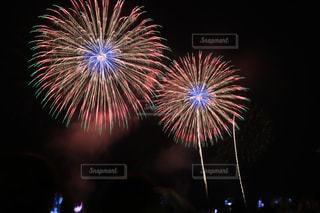 日本の花火の写真・画像素材[888256]