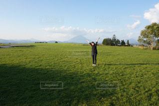 広大な青々と青々と茂る芝生の写真・画像素材[1113243]
