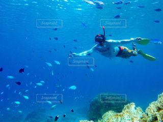 水を泳ぐ人たちのグループの写真・画像素材[897013]