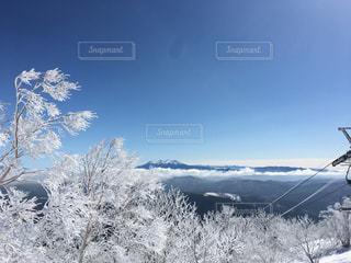 雪をスノーボードに乗る男覆われた斜面の写真・画像素材[1100080]