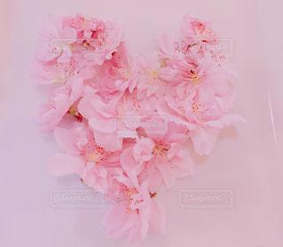 桃の花でloveの写真・画像素材[1125531]