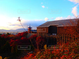 秋,清水寺,紅葉,京都,もみじ,観光,旅行,KYOTO,Travel,trip