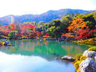 絶景,紅葉,京都,湖,もみじ,旅行,KYOTO,嵐山,遺産,trip,天龍寺