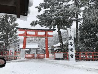 雪,京都,雪景色,世界遺産,景色,観光,上賀茂神社