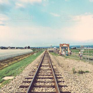 ラベンダー駅の写真・画像素材[891835]
