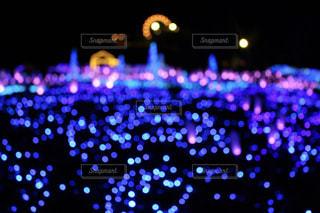 紫光の写真・画像素材[914519]