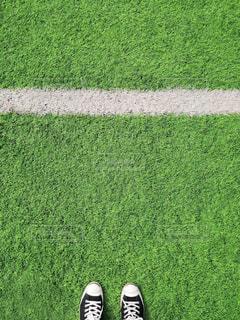 緑のフィールドのクローズアップの写真・画像素材[2104202]