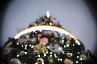 クリスマスツリーの写真・画像素材[914787]