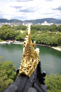 烏城の金の鯱 - No.916406