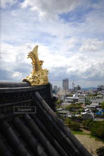 烏城の金の鯱の写真・画像素材[916409]